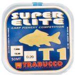 carp-fishery – kopie