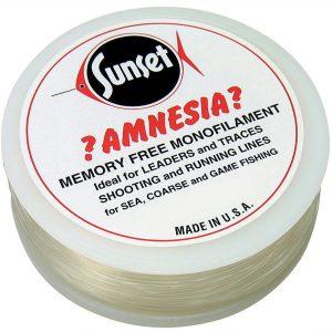 Amnesia Doorzichtig