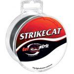 70_cat_strike_cat